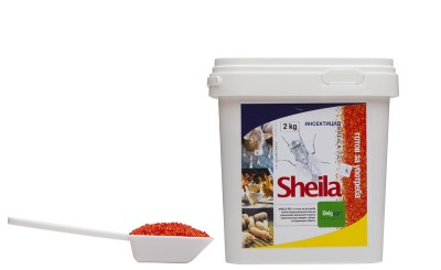 Sheila-RB-Large1